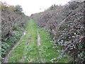 TL4676 : North Fen Drove by Jonathan Billinger