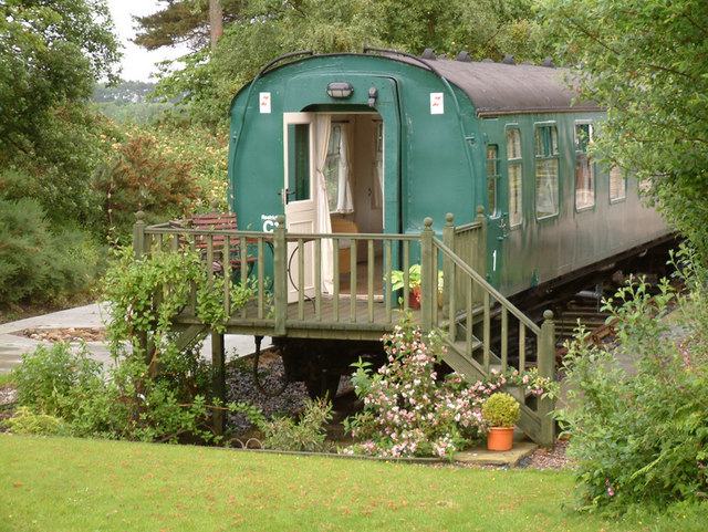 how to house train a puppy uk