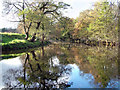 SK2379 : River Derwent by Stephen Burton