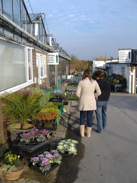 Swanland Nurseries