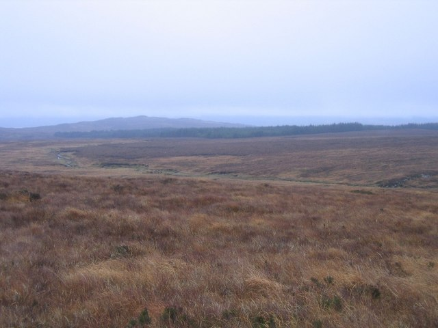 Moorland and stream