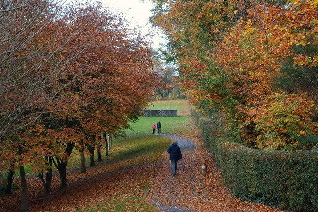 Autumn Belmont Park Belfast 1 169 Albert Bridge