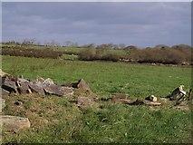 SX2692 : Fields near Sunny View Farm by Derek Harper