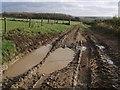 SX2994 : Track to Beardon by Derek Harper