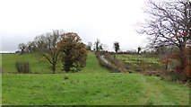 H6822 : Scene at the centre of Co. Monaghan; 1 by Jonathan Billinger