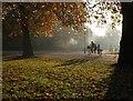 TQ2777 : Battersea Park by Derek Harper