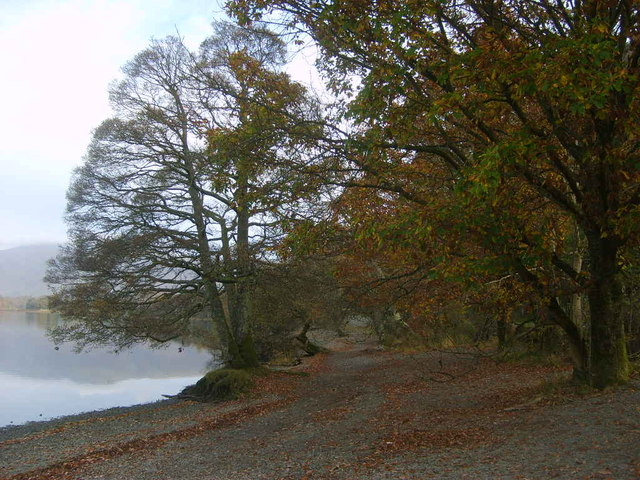 Derwent Water shore