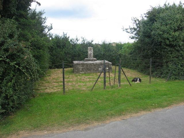 Wayside cross, Sarsfieldstown, Co. Meath