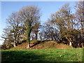 SM9526 : Wolf's Castle mound by ceridwen