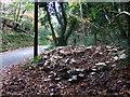 SN0333 : Roadside feast in Cwm Gwaun by ceridwen