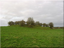 N4884 : Ringfort, Garrysallagh, Co. Cavan by Kieran Campbell