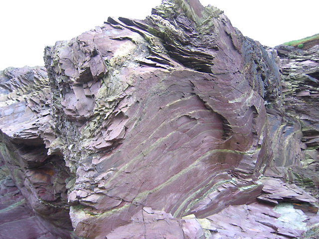 Contorted slate at Hayle Bay