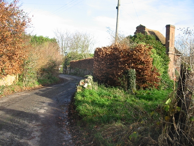 View along Watercress Lane, Wingham Well