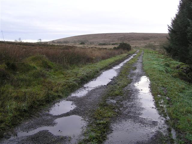 Road at Skreancummin