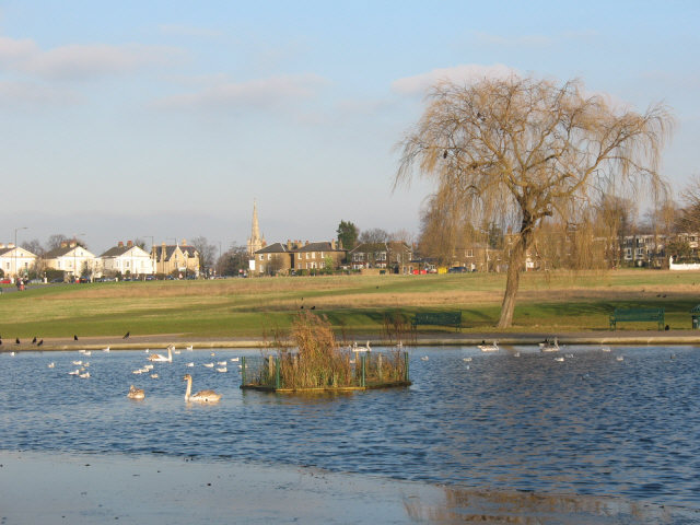 Blackheath Pond