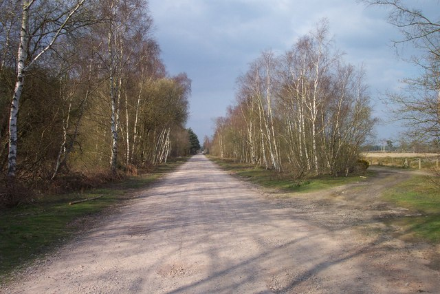 Former Longmoor Military Railway looking north