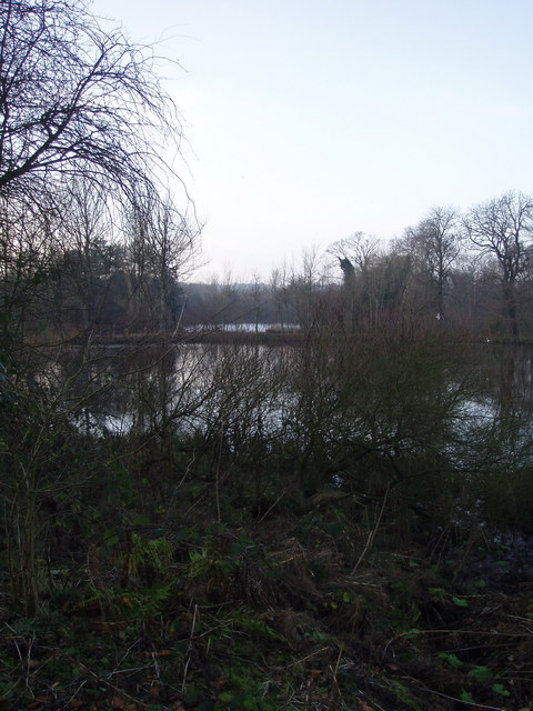 Fish Ponds Sandwell Priory
