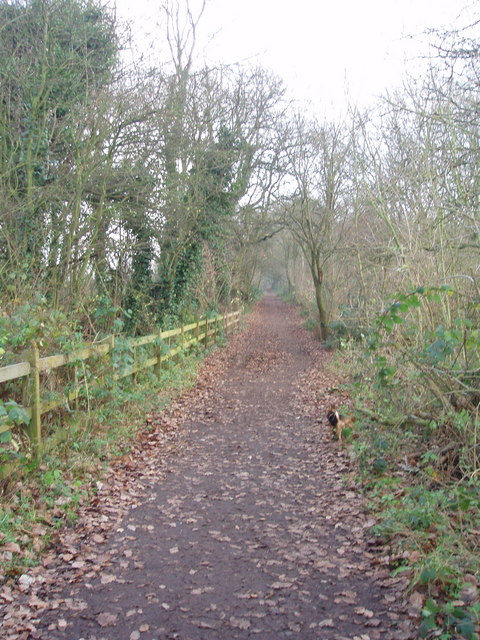 Lane leading to Sandwell priory