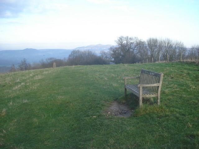 Seat on Oyster Hill