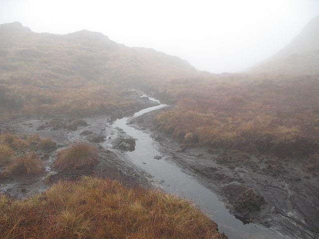 Boggy stream