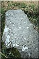 S4332 : Ogham Stone by kevin higgins