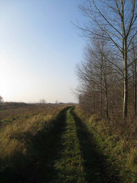 Track at New Fen