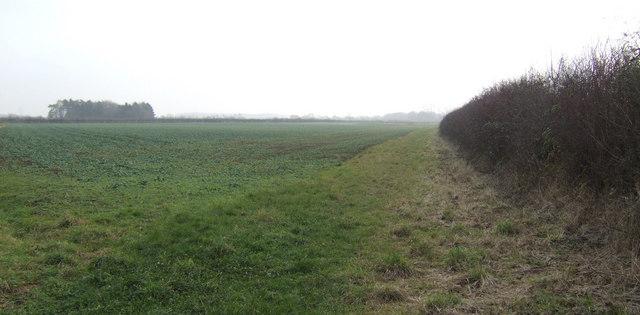 Footpath east of Southrop