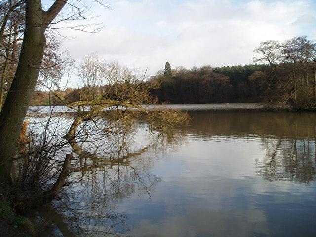 Willesley lake