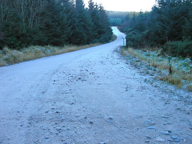 A frosty mountain bike trail in Durris Forest