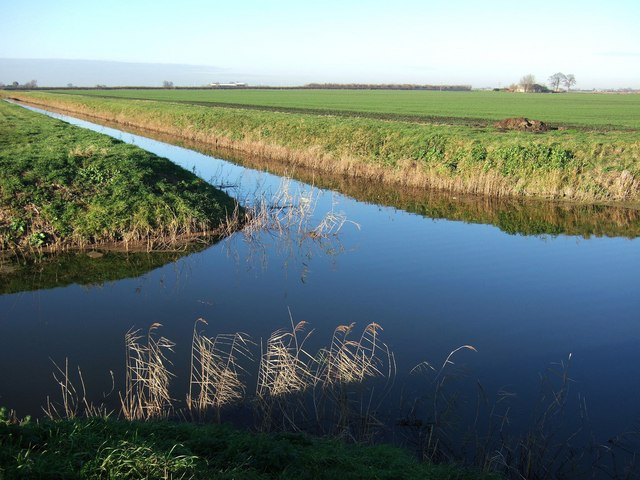 Drain junction in the fens