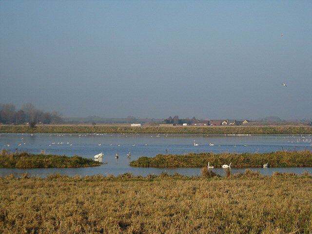 Washlands at Lakenheath Fen