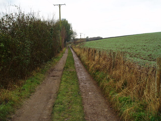 Country lane on a dull December day