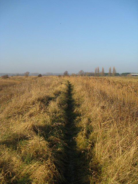 Hereward Way, Lakenheath Fen
