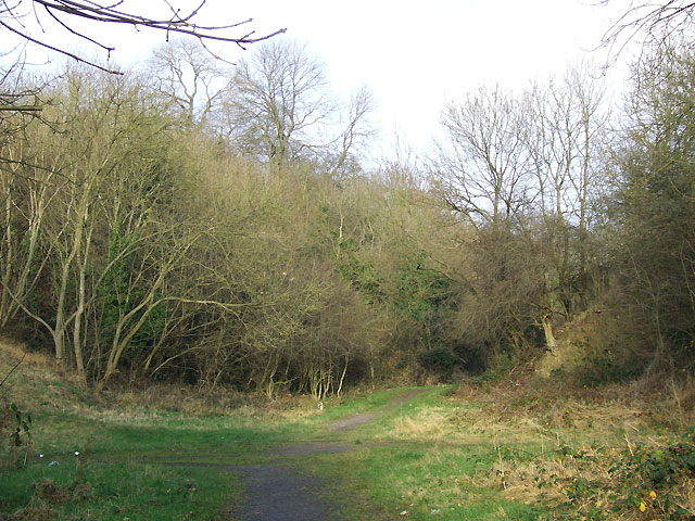 Woodland Trail, Dudley, Worcestershire