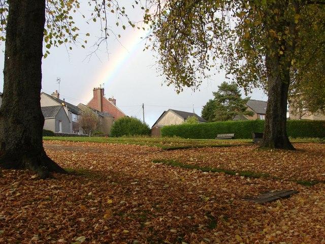 Autumn in Delves Park (2)
