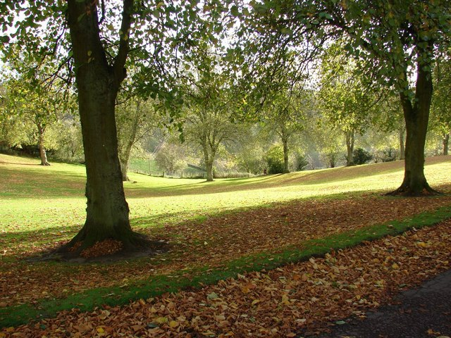 Autumn in Delves Park (3)
