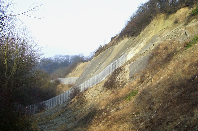 Dipping Limestone , Dudley, Worcestershire