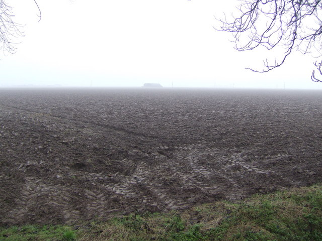 Fenland ploughed field