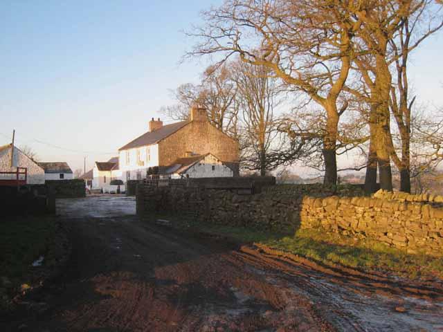 Rinnion Hills Farm