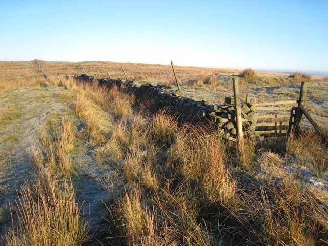 Moorland near Gillalees Beacon