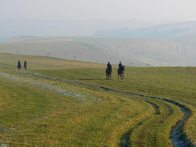 The Ridgeway and horses, Smeathe's Ridge, Barbury