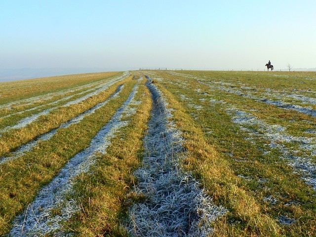 Further along The Ridgeway, Smeathe's Ridge, Barbury