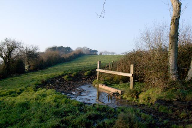 Horse pond, Charlton Horethorne