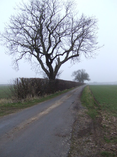 Road to Rothwell Top Farm