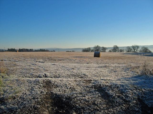 Field at Bellevue