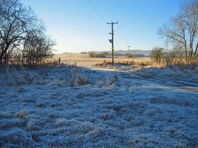 Fields near Tarradale House