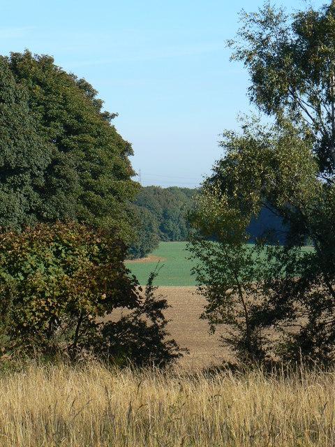 Fryston Park