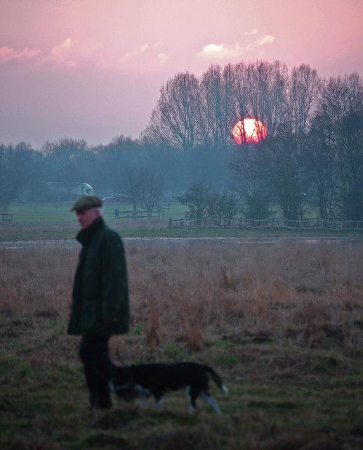 Sunset Dog Walker