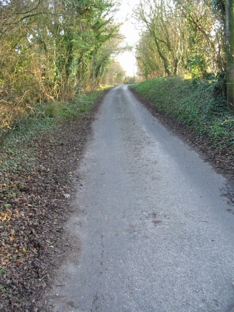 View along Singledge Lane in the direction of Whitfield