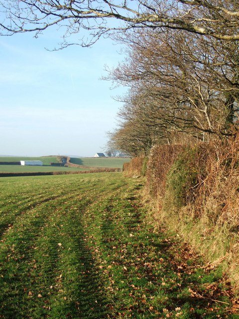 Fields south of Lewannick